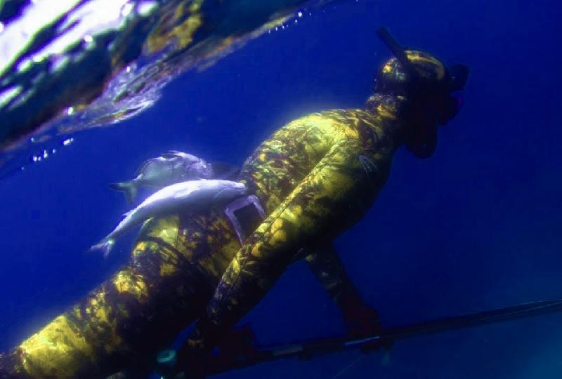Combinaison de chasse sous marine sur mesure avec ou sans camouflage néoline watersport
